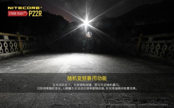 P22R1211-5.jpg