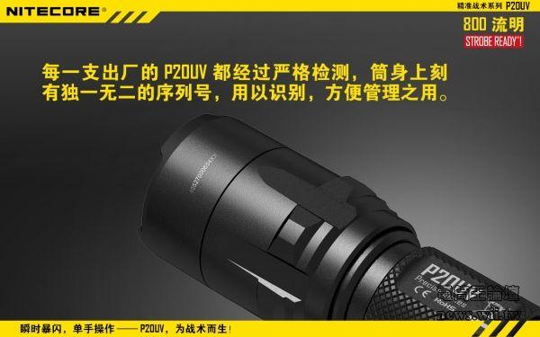 P20UV-19.jpg